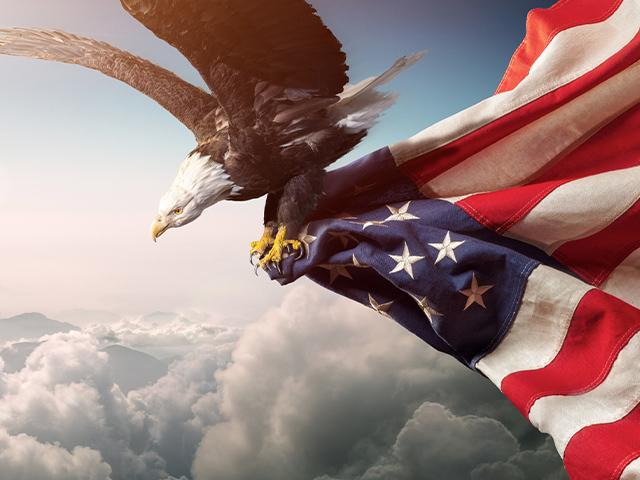 eagle flying with an American flag