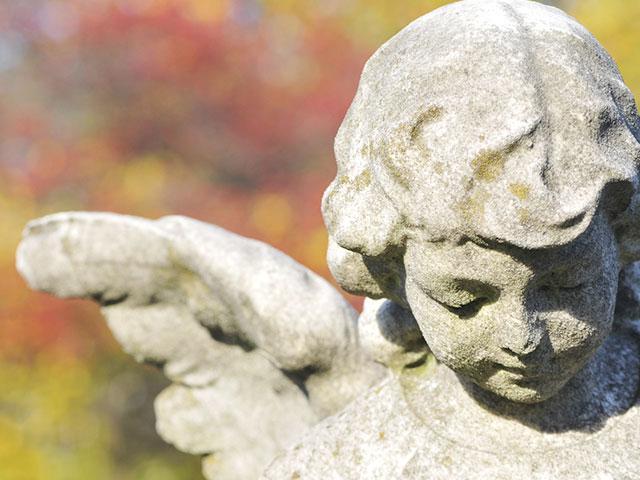angel-helping