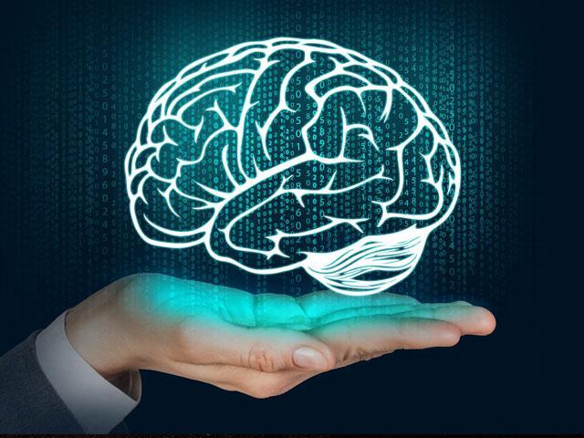 brain-mind-hand_SI.jpg