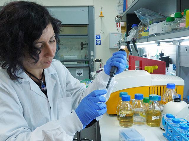 Israeli Lab and the Coronavirus Vaccine