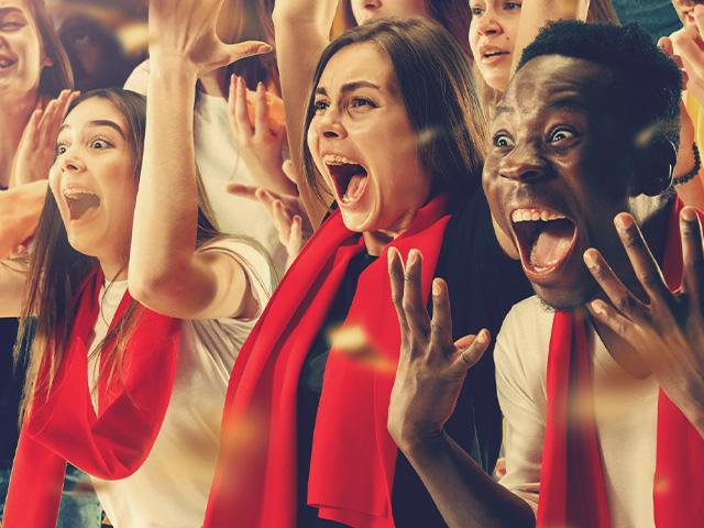 fans cheering in a stadium