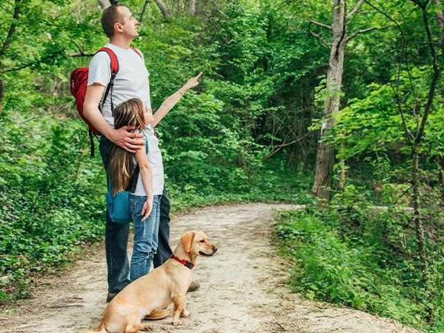father and daughter in the woods on a walk
