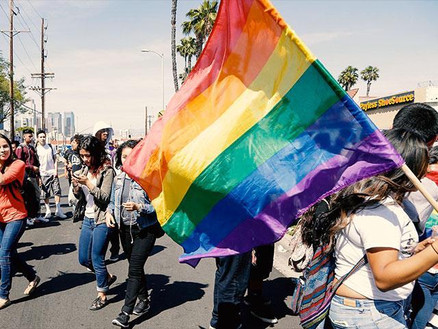 gayflagprotestap