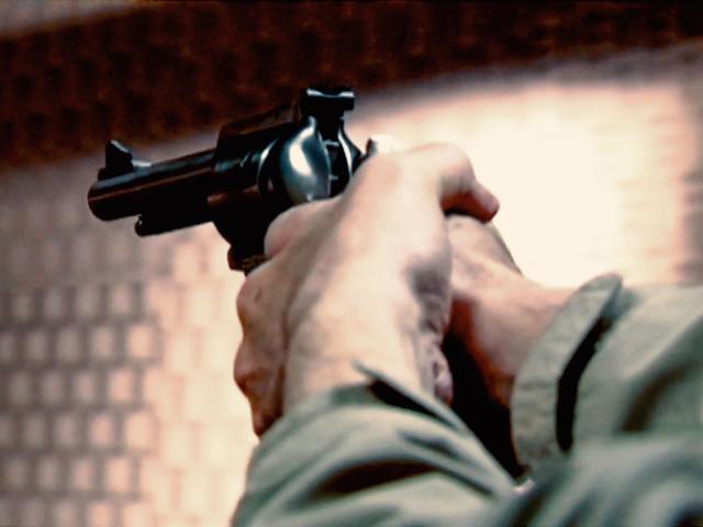 handgun2