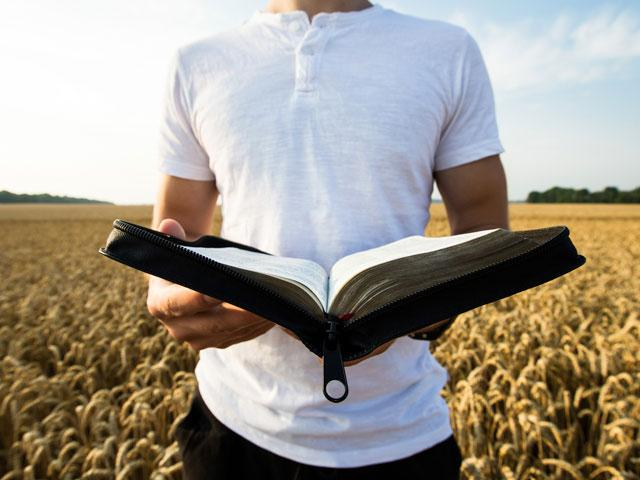 man with open Bible in wheat field