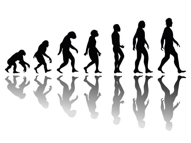 man-evolution_SI.jpg
