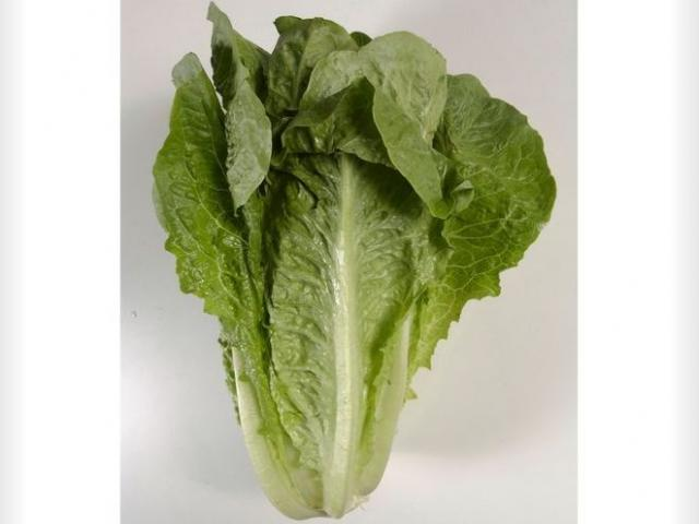 This undated file photo shows romaine lettuce. (AP Photo)
