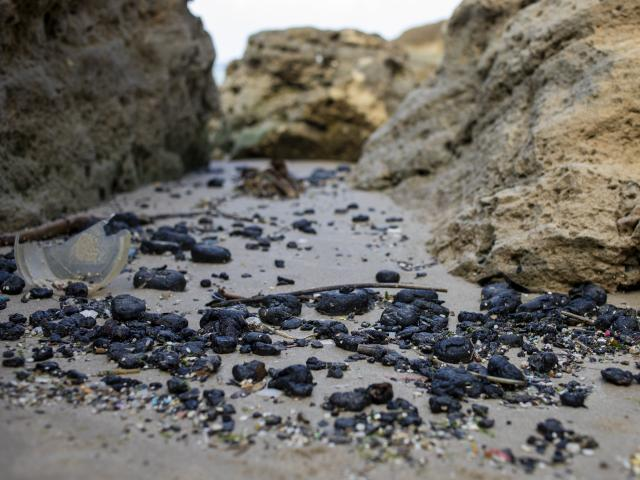 Pieces of tar from an oil spill in the Mediterranean Sea wash up on a beach in Israel. Monday, March 1, 2021. (AP Photo/Ariel Schalit)