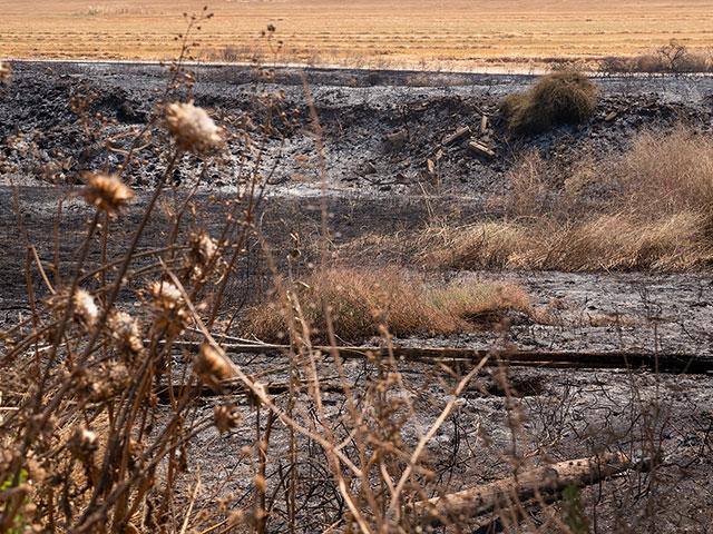 Scorched field at Kibbutz Nir Am, Photo, CBN News, Jonathan Goff