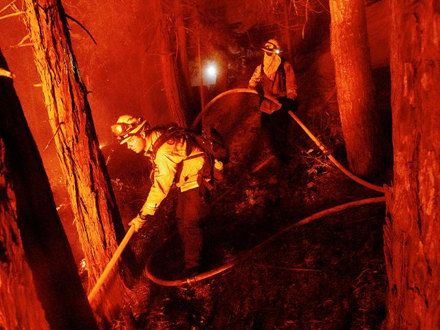 Firefighter Nick Grinstead battles the Creek Fire in the Shaver Lake community of Fresno County, Calif., on Sept. 7, 2020. (AP Photo/Noah Berger)