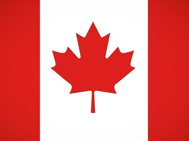 The maple leaf in the national flag of Canada. (Image credit: Adobe Stock)