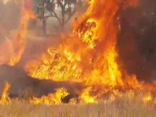 'Terror Kites' Causing Massive Fires in Southern Israel, Photo, Screen Capture, JNF