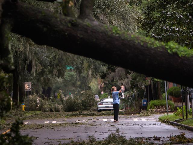 Georgia Storm