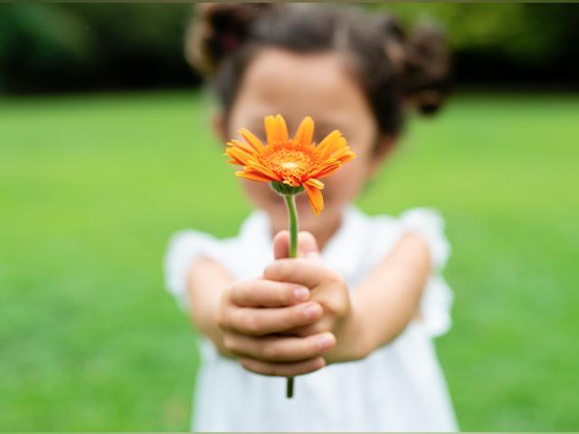 Girl holding daisy flower