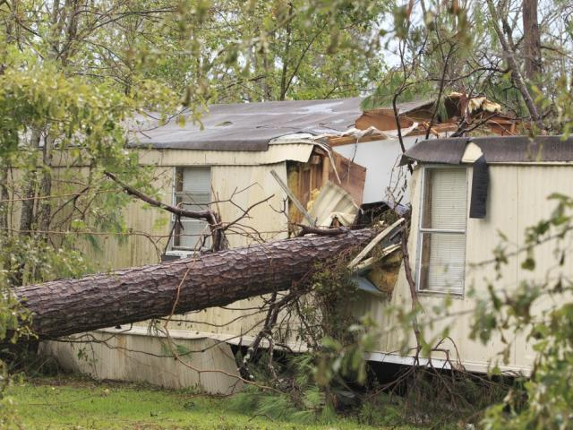 A mobile home is destroyed by a fallen tree, Friday, Aug. 28, 2020, in Westlake, La., from Hurricane Laura. (Kirk Meche/American Press via AP)