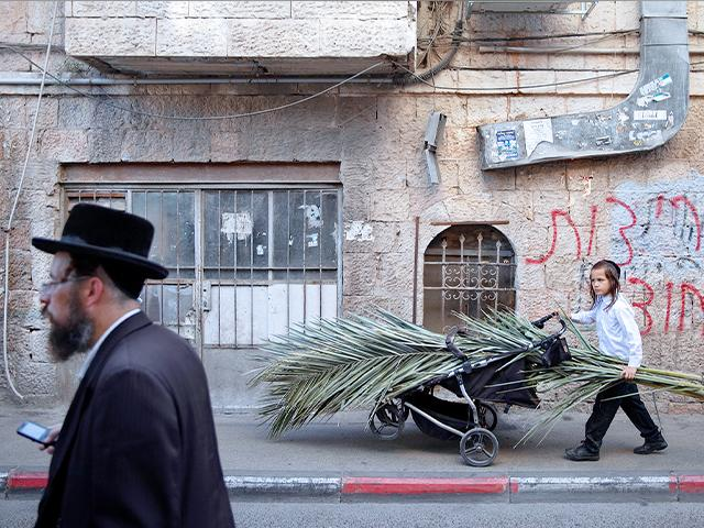 An ultra-Orthodox Jewish child carries palm fronds to build a Sukkah, ahead of the upcoming Jewish holiday of Sukkot during the current nationwide lockdown.(AP Photo/Oded Balilty)