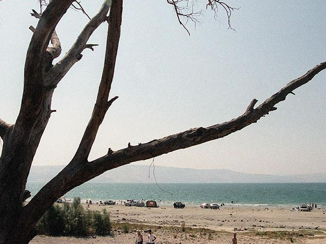 Kinneret (Sea of Galilee) Shore, Photo Courtesy GPO, Moshe Milner