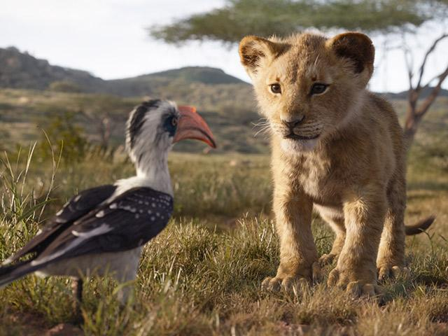 The Lion King, 2019 movie