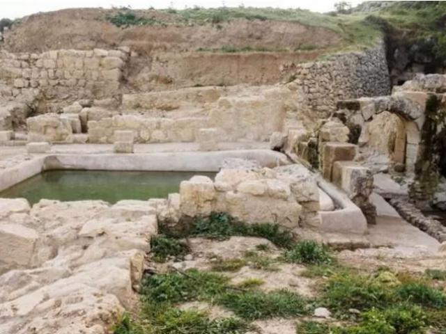 A pool at Ein Hanya nature park. Photo credit: Assaf Peretz, Israel Antiquities Authority