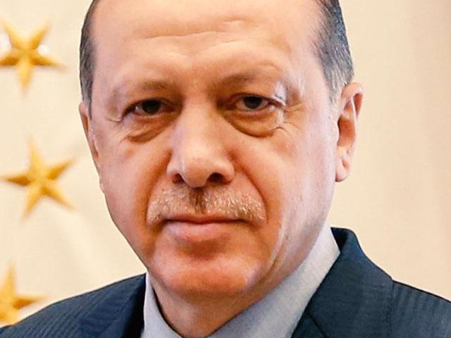 Turkish President Recep Tayyip Erdoğan, Photo, Wikileaks