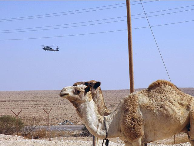 Sinai, Courtesy GPO, Moshe Milner