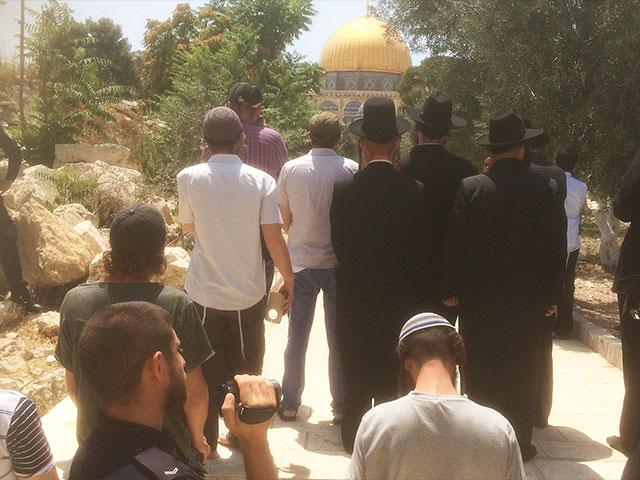 Jews Visit Temple Mount on 'Day of Rage' Photo, TPS, Andrew Friedman