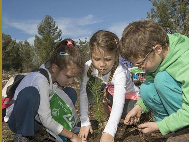 Planting trees on Tu B'Shevat, Photo KKL/JNF