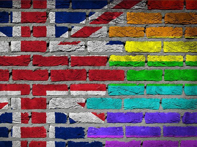 UK LGBT activists
