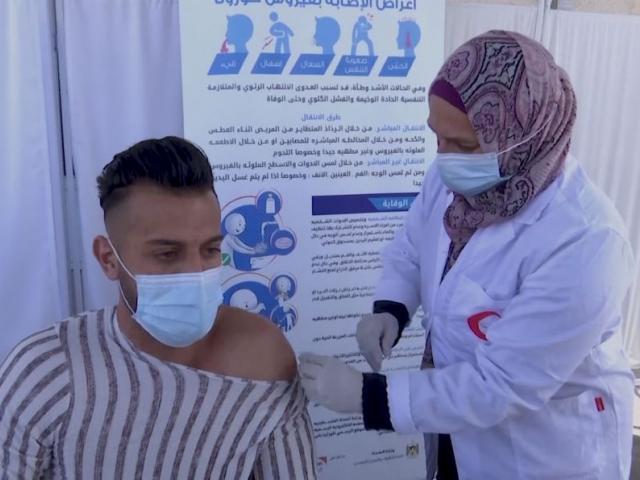 vacuna palestina
