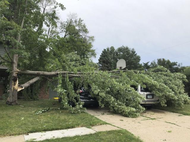 A tree fell at a home in West Des Moines, Iowa, after a severe thunderstorm moved across Iowa on Aug. 10, 2020 (AP Photo/David Pitt)