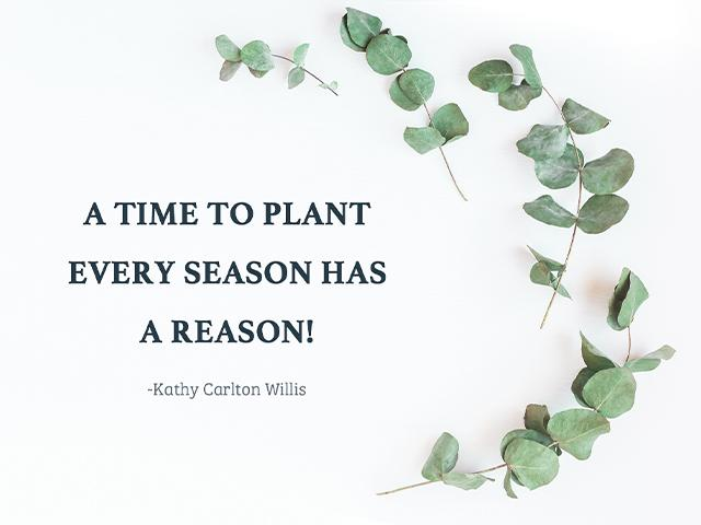 A time to plant - Every Season has a reason! ~Kathy Carlton Willis