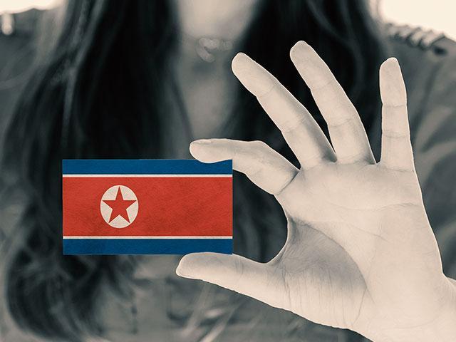 northkoreabusinesscardas