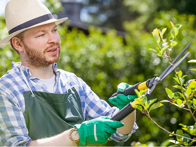 outdoors-man-gardening_SI.jpg