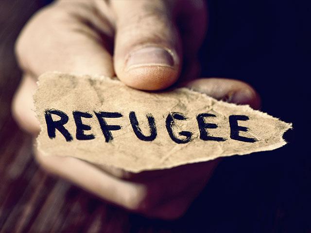 refugeepaperhandas
