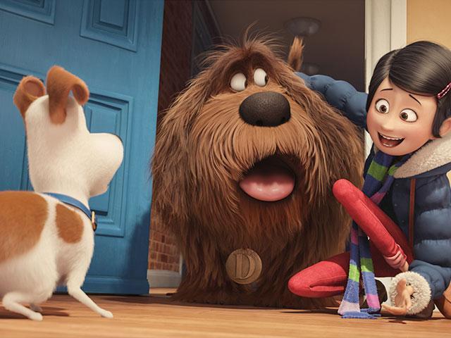 The Secret Life of Pets, christian movie reviews