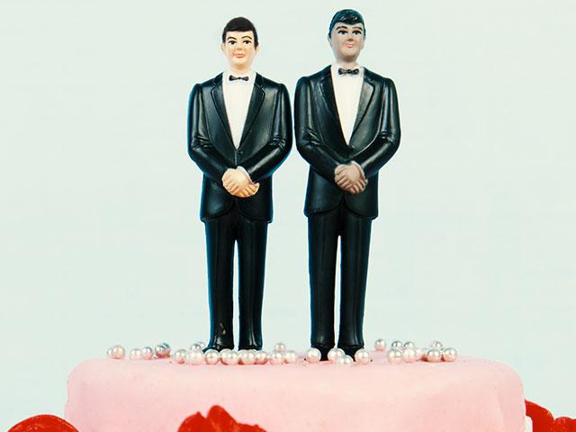 wedding cake topper 2 men