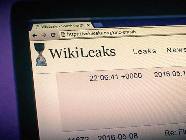 Wikileaks Website