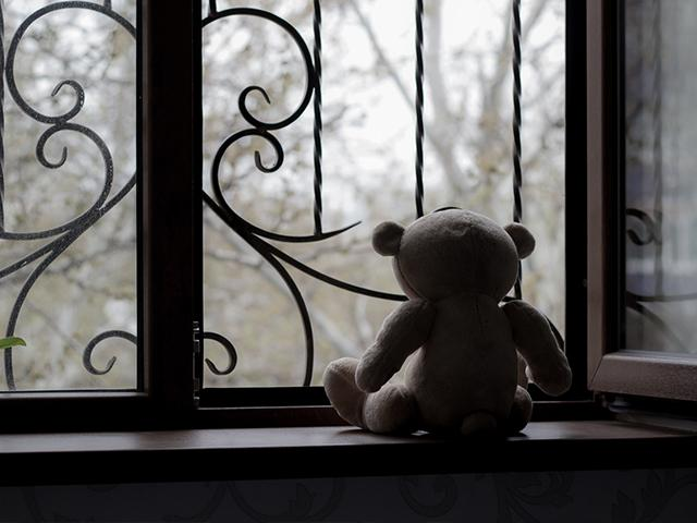 window-teddy-depression_si.jpg