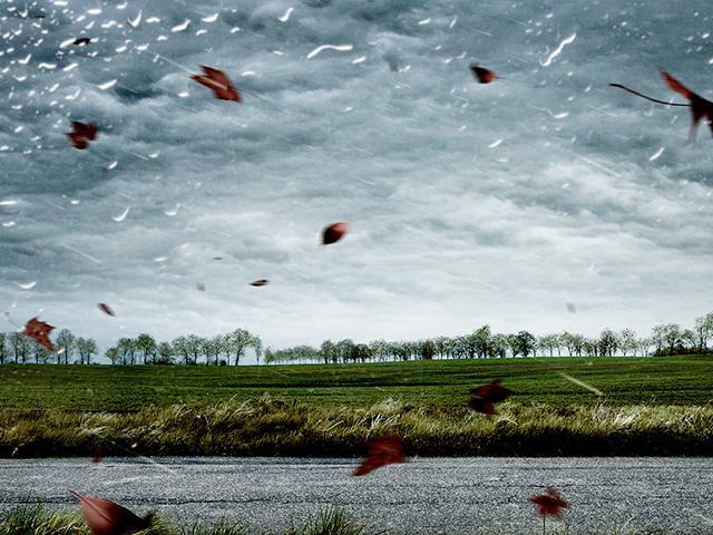 wind storm autumn