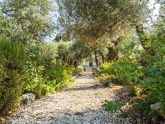 Scripture Comes Alive At The Garden Of Gethsemane