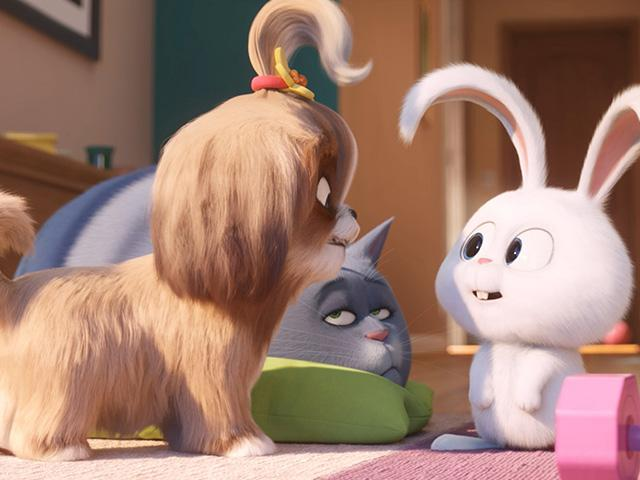 The Secret Life Of Pets 2 Movie Review Cbn Com