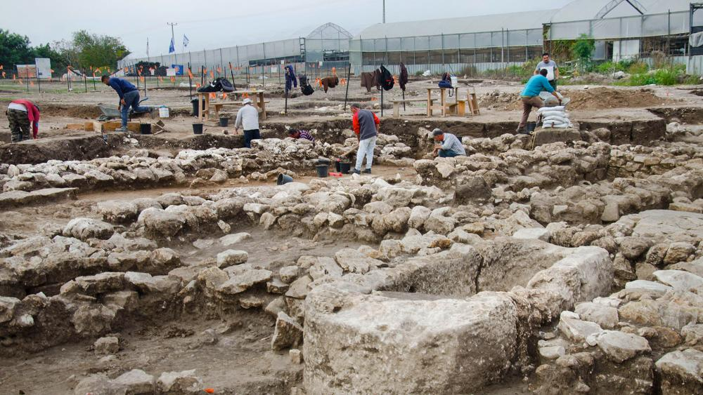 archaeological-4_hdv.jpg