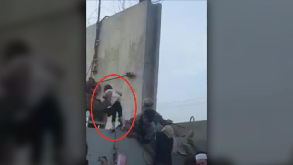 """A desperate family hands their toddler over the fence at Kabul airport (Image: Screen shot from """"Rise to Peace"""" video)"""