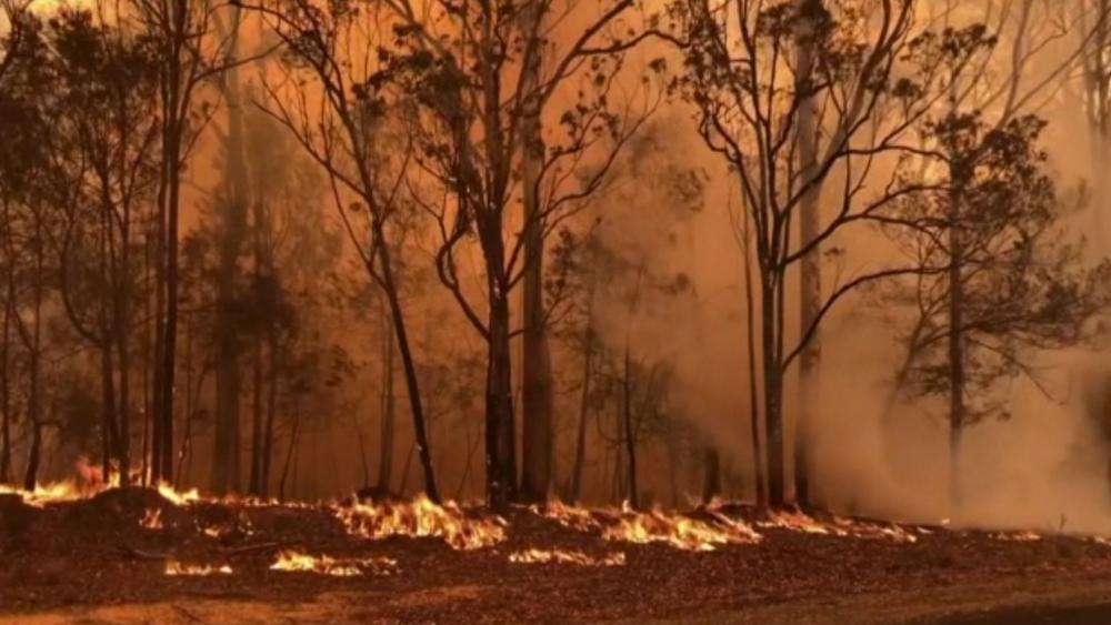 Australian wildfires (AP Photo)
