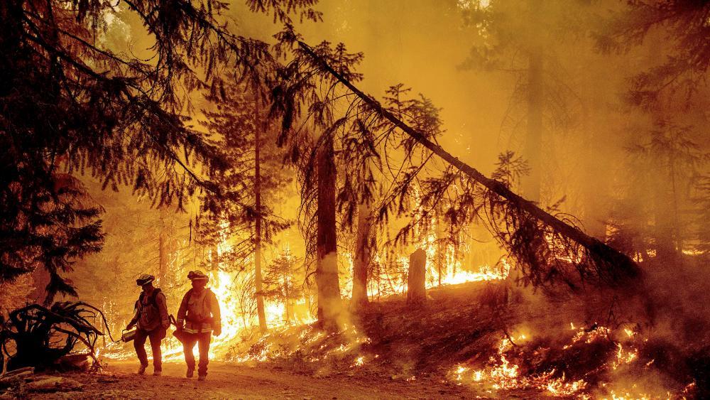 Firefighters fight Dixie Fire near Prattville in Plumas County, Calif. (AP Photo/Noah Berger)