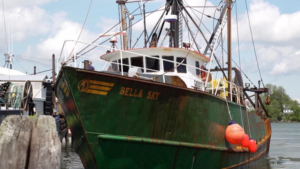 FishingIndustry