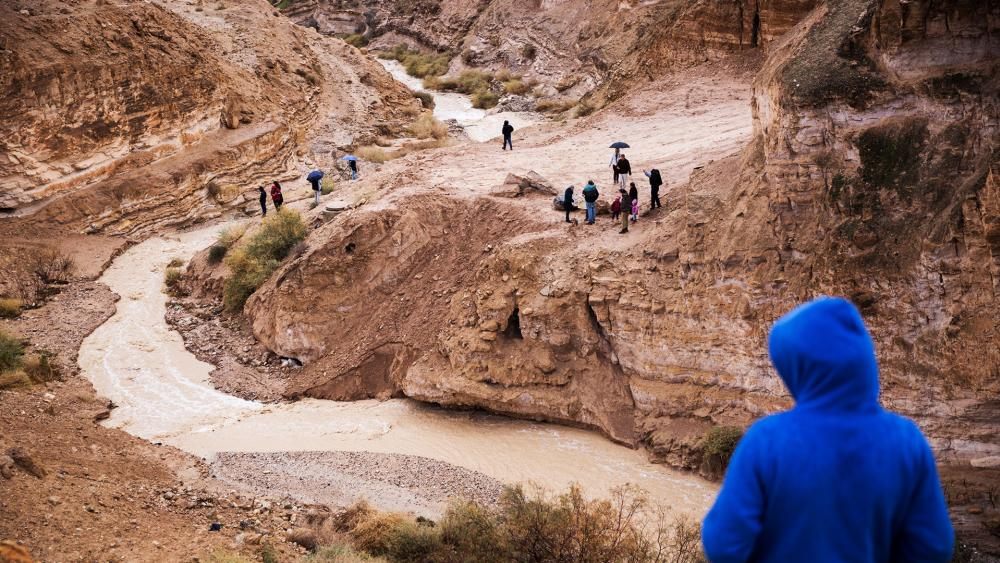 Locals watch streams form in the desert after the rain at Wadi Og near Nabi Musa, Photo, TPS, Hillel Maeir
