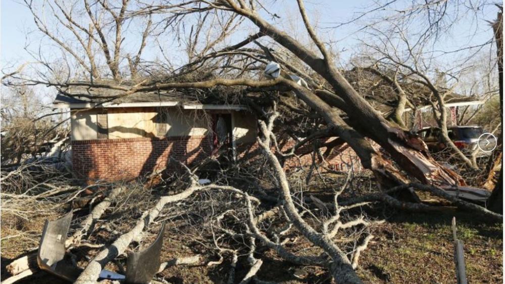 Tornado strewn debris and fallen trees take their toll in this Columbus, Miss., neighborhood, Sunday morning, Feb. 24, 2019. (AP Photo/Rogelio V. Solis)