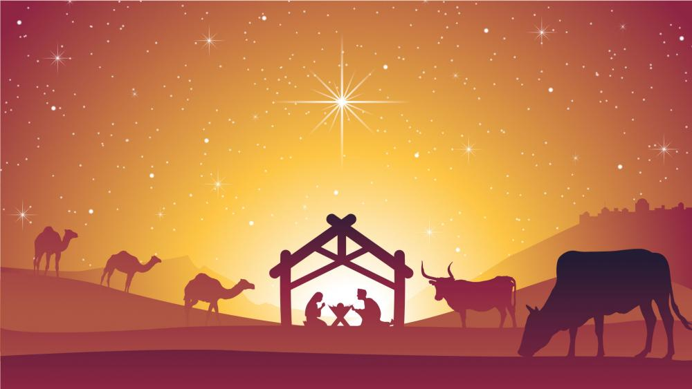 Christmas Jesus Birth Images.The Birth Of Jesus In The New Testament One Event Four