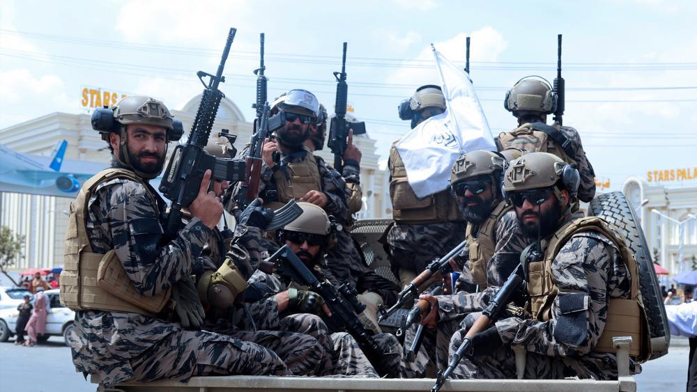talibanspecialforces